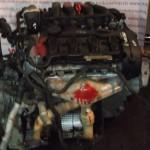 Двигатель Фольксваген BLY 2.0